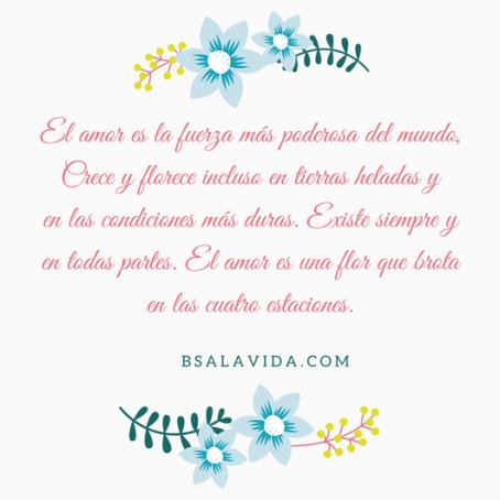 El amor es la fuerza más poderosa del mundo, Crece y florece incluso en tierras heladas yen las condiciones más duras. Existe siempre y en todas partes. El amor es una flor que brota e